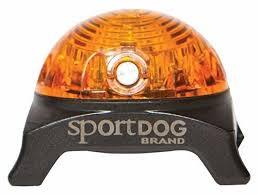 SportDog vilkkuvalo keltainen
