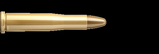 Sellier & Bellot 22 Hornet 2,9g