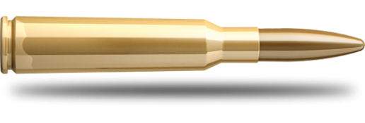 Sellier & Bellot 6,5x55 SE 8 g / 124 gr, 50 kpl /ras